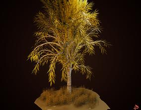 3D Custom Birch Tree