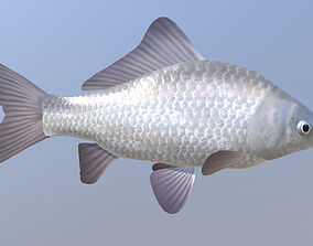 Carassius silver 3D model animated