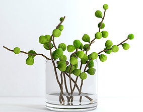 exotic 3D Fig branches
