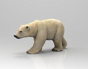 3D asset low-poly POLAR BEAR glacier