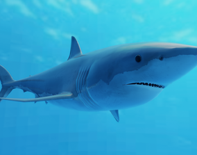 Great White Shark 3D asset