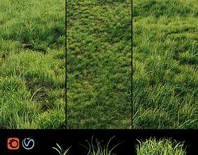 3D model Grass for landscaping exterior