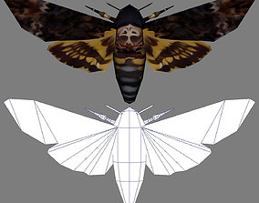 3D asset Low-Poly Hand-Painted Death Head HawkMoth