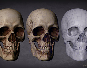 Skull game-ready and 3D print game-ready
