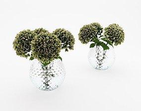 3D model Hydrangea Bouquet