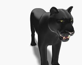 Feline Panther - 3d model rigged