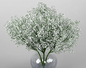 3D nature Ornamental plant 19 Baby breath spray