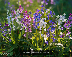 PBR 3D grass and wildflowers collection vol01 nature