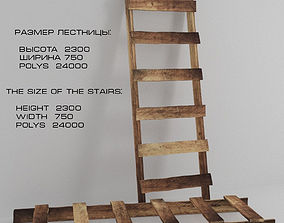 3D model Ladder stepladder