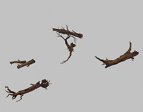 tree 3D model Forest - Deadwood 688