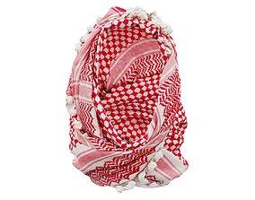 HeadScarf Dentist 3D model