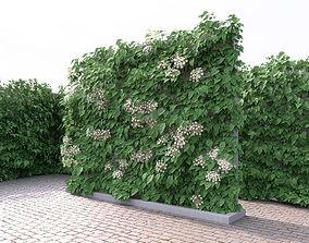 Green Wall With Flowers Hydrangea 3D model
