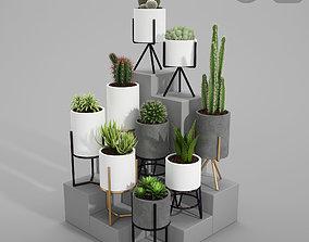 PLANT MODEL 3 3D