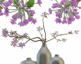 Blooming sakura branches in a vase 3D model