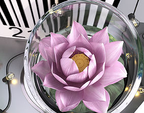 Pink water lily lotus plants vase with string 3D model 1