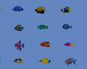 3D model Fishes MEGA PACK