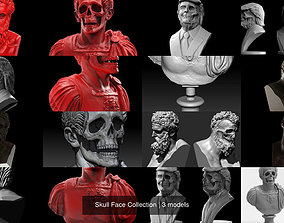 3D model death Skull Face Collection