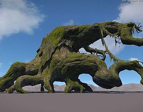 Ancient Tree V14 3D asset