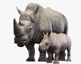Rhino Family 3D model