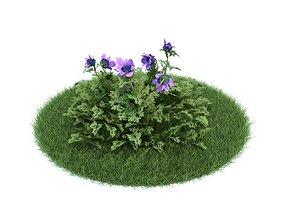 3D model Anemone Coronaria Purple Flower