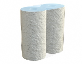 Paper towel 2 pack small 3D
