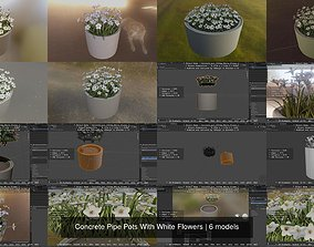3D model Concrete Pipe Pots With White Flowers