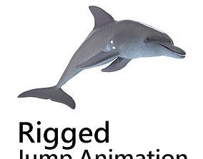 3D Dolphin jump animation