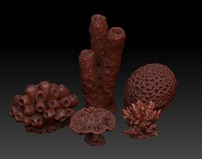 Sea Coral Scan Collection organic 3D model