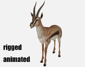 antelope goat caprine sheep lamb deer animation 3D model