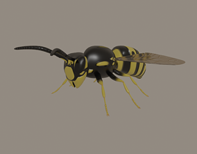 Wasp model rigged