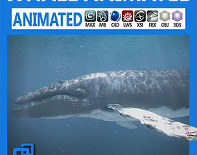 Animated Whale 3D