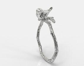 Bird ring 3D print model