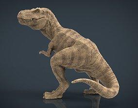 3D asset Tyranossaurus Rex sculpture