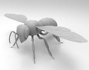 Honey Bee honey 3D model