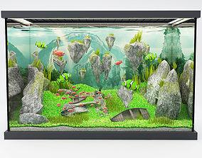 3D modern aquarium avatar