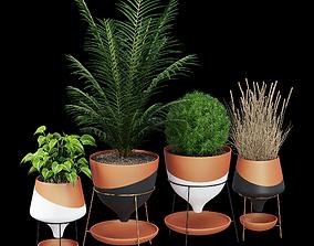 Funnel 3D model palm