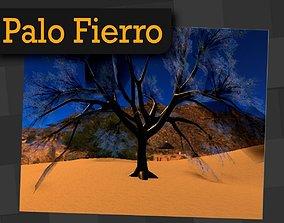 Palo Hierro Mexican Tree 3D model
