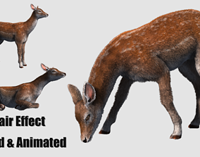 hair effect deer 3D