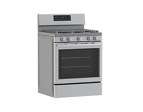 Samsung Gas Range with Convection 3D