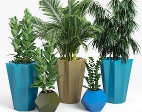 3D Siro planter