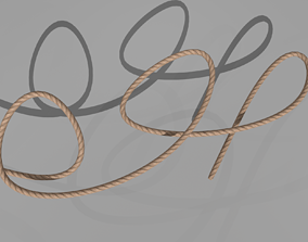 3D asset ROPE rigged