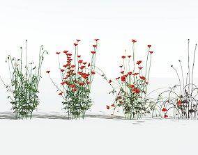 EVERYPlant Field Poppy EXT --36 Models--