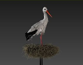 Stork 3D model feathers