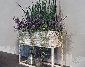 Terrace plants 2 3D model