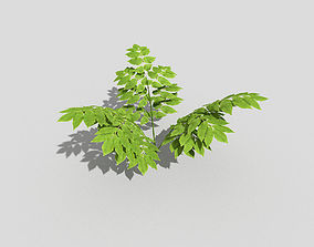 3D model game-ready Plant beach