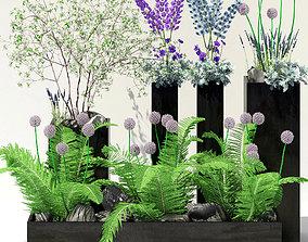 Flowerbeds in black pots 3D