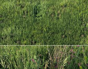 Grass field 01 3D model realtime