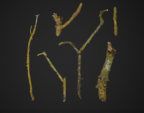 Photoscanned Mossy Branches 3D model