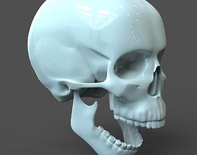 3D CAD compatible Human Skull model M3P1D1V1Skull