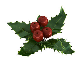 3D model Mistletoe Sprig Holly